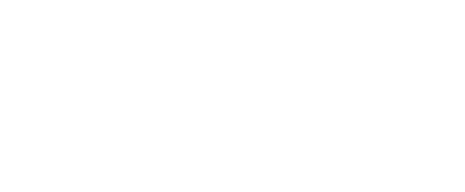 DB Pro Services